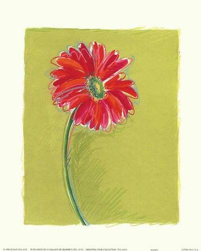Daisy Poster by Susan Zulauf for $11.25 CAD