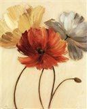 Poppy Palette I