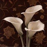 Flores Elegante I