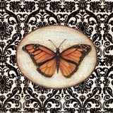 Fanciful Butterfly I