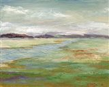 Meadow Stream II