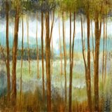 Soft Forest I