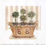 Topiary Tub