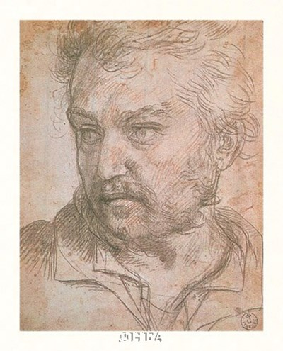 A Young Man Poster by Andrea Del Sarto for $17.50 CAD