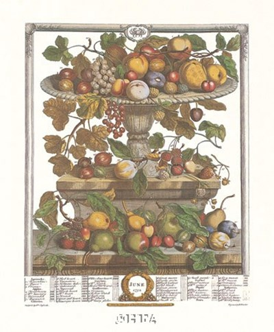June/Twelve Months of Fruits, 1732 Poster by Robert Furber for $22.50 CAD