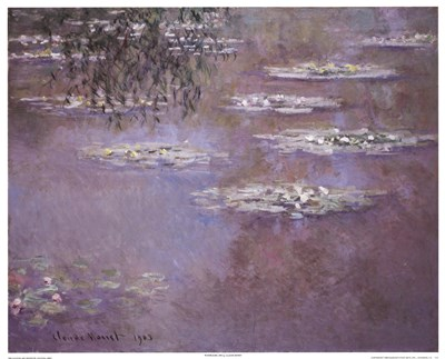 Waterlilies, 1903 Poster by Claude Monet for $38.75 CAD