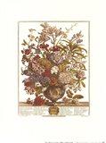 July/Twelve Months of Flowers, 1730
