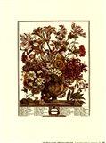 October/Twelve Months of Flowers, 1730