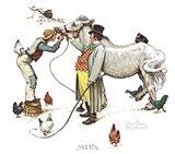 Horse Trader