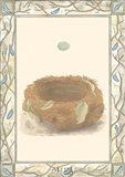 Woodland Nest III