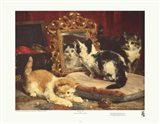Kittens, 1893