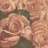 Rose Cluster I
