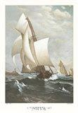 A Winning Yacht
