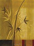 Bamboo Impressions I