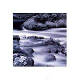 Zen Water #1