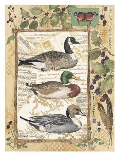 3 Ducks Poster by Anita Phillips for $78.75 CAD