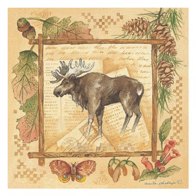 Moose (rustic border) Poster by Anita Phillips for $58.75 CAD