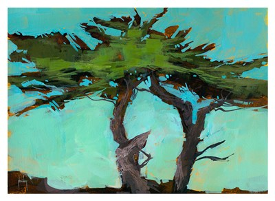 Cypresses Poster by Paul Bailey for $88.75 CAD