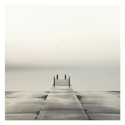 Pier and Seagull Poster by Nicholas Bell for $58.75 CAD