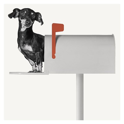 You've Got Mail Poster by Jon Bertelli for $88.75 CAD