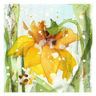Daffodil Poster by Dawn Derman for $58.75 CAD