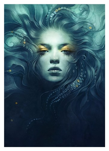 Ink Poster by Anna Dittman for $88.75 CAD