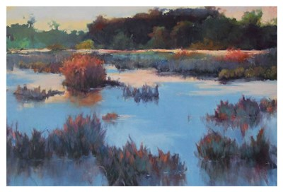 Ace Basin Creek Poster by Madeline Dukes for $130.00 CAD