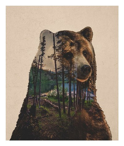 Bear Lake Poster by Davies Babies for $52.50 CAD