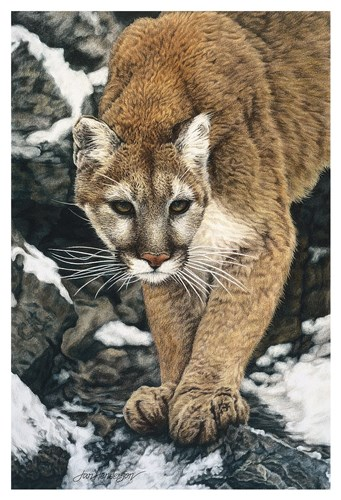Silent Approach Poster by Jan Henderson for $130.00 CAD