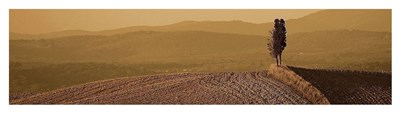 Toscana Landscape 1 Poster by PhotoINC Studio for $46.25 CAD