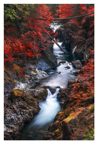 Water in the Fall Poster by Vladimir Kostka for $85.00 CAD