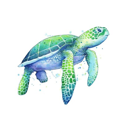 Green Sea Turtle Poster by Sam Nagel for $58.75 CAD