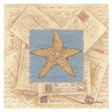 Starfish Postcard I