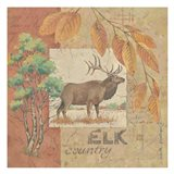 Deer / Elk Country
