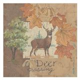 Deer / Deer / Elk Crossesing