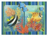 Tropical Fish Goup II
