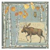 Moose (blue background)