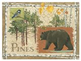 Bl Bear Pines