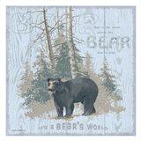 Bear's World Gray