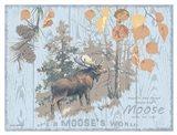Moose's World Gray