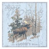 Moose's World Gray
