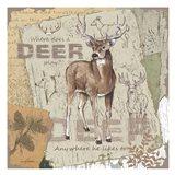 Deer Play