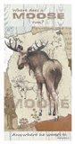 Moose Run