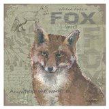 Where Does a Fox Trot