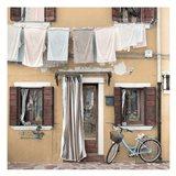 Venetian Bicicletta #1