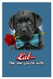 Lab the One You're With