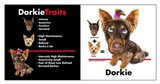 Dorkie Traits