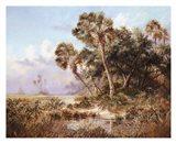 Glades Cove