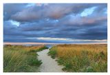 Jetties Beach Path