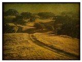 Ranch Road and Oak Savannah